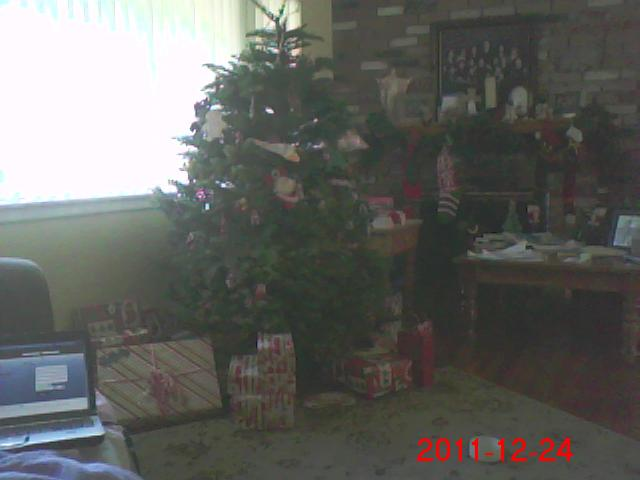 Post your Christmas tree and presents. Img00010