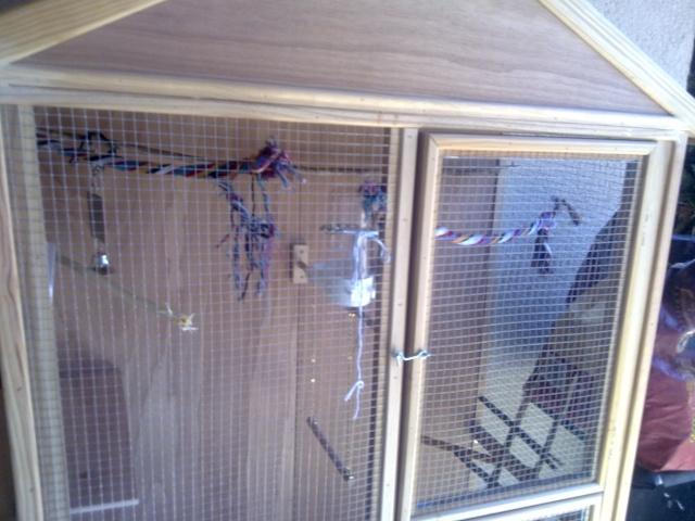 cage en construction - Page 2 06052011