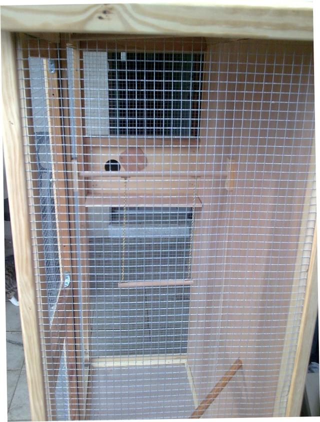 cage en construction Photo011