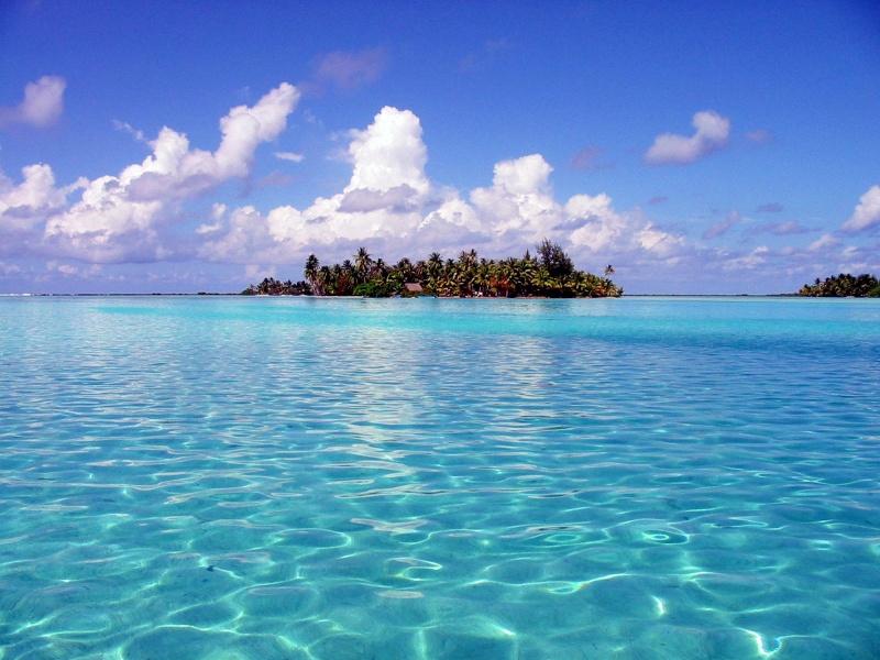 Plongée en Polynésie... Cd06f_19
