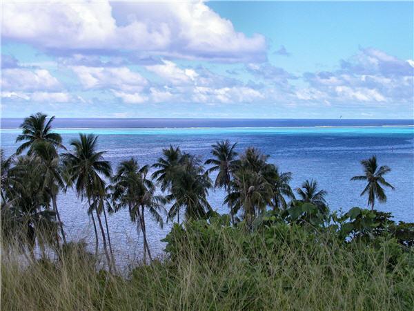 Plongée en Polynésie... Ile_de10
