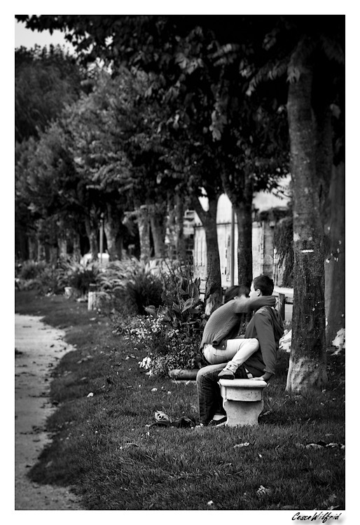 Amour d'automne Les_am11