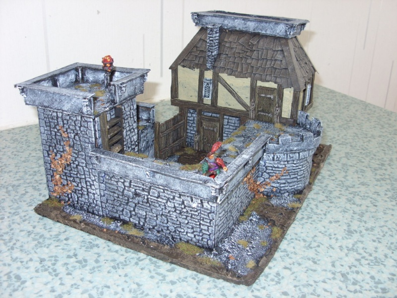 fortified manor 00311
