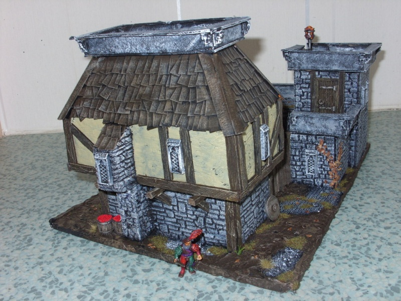 fortified manor 00711