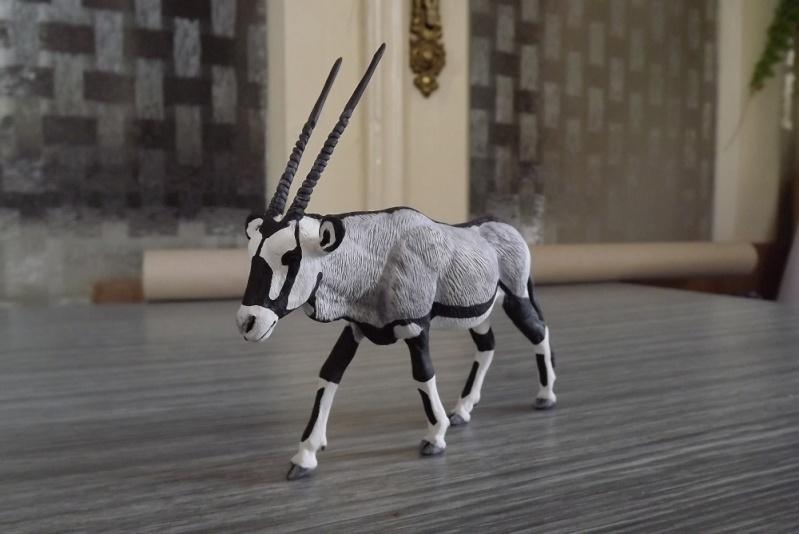 my new gorgeous lady!!!!! HK Oryx Dscf1012