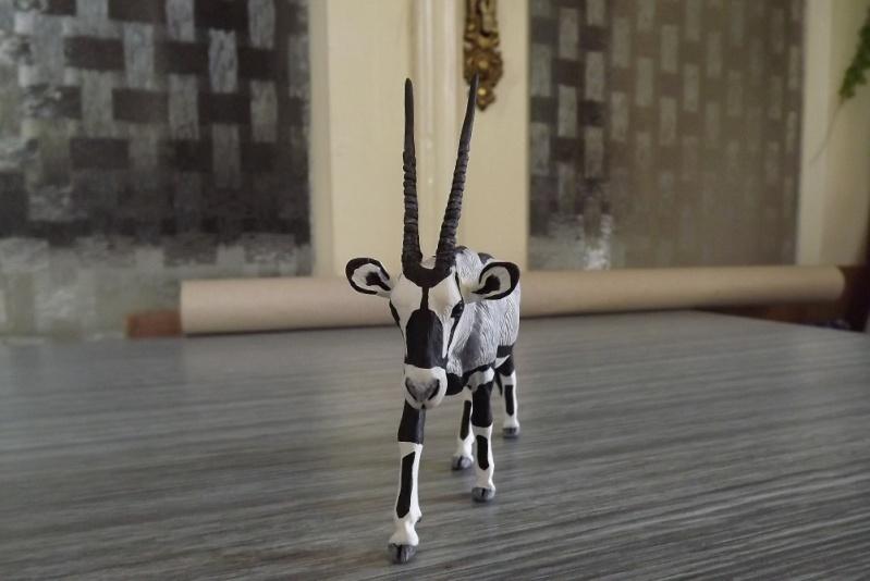 my new gorgeous lady!!!!! HK Oryx Dscf1013