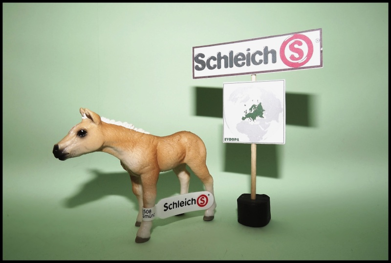 Martin's Schleich newcomers! - Page 9 Dscf1510