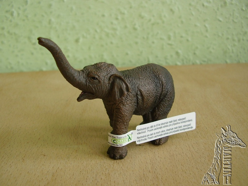 Martin's Schleich newcomers! - Page 5 P1010209
