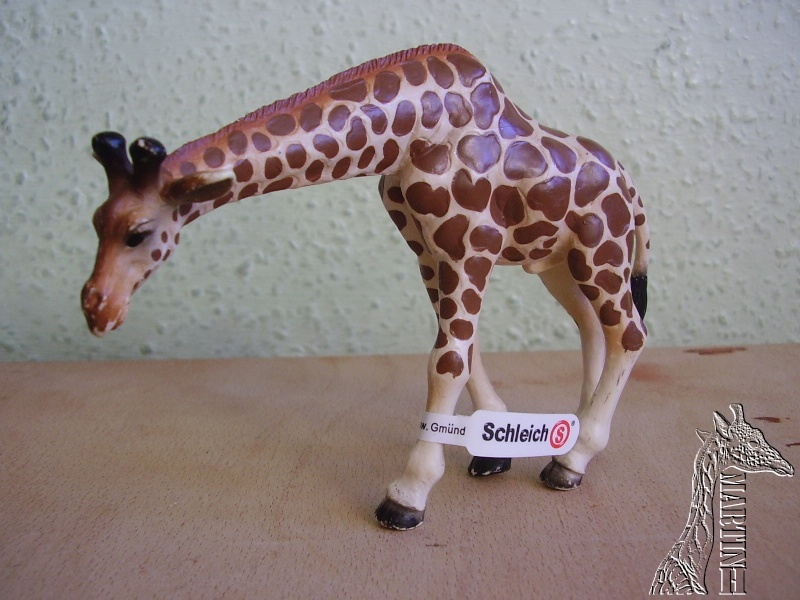 Martin's Schleich newcomers! - Page 6 P1010290