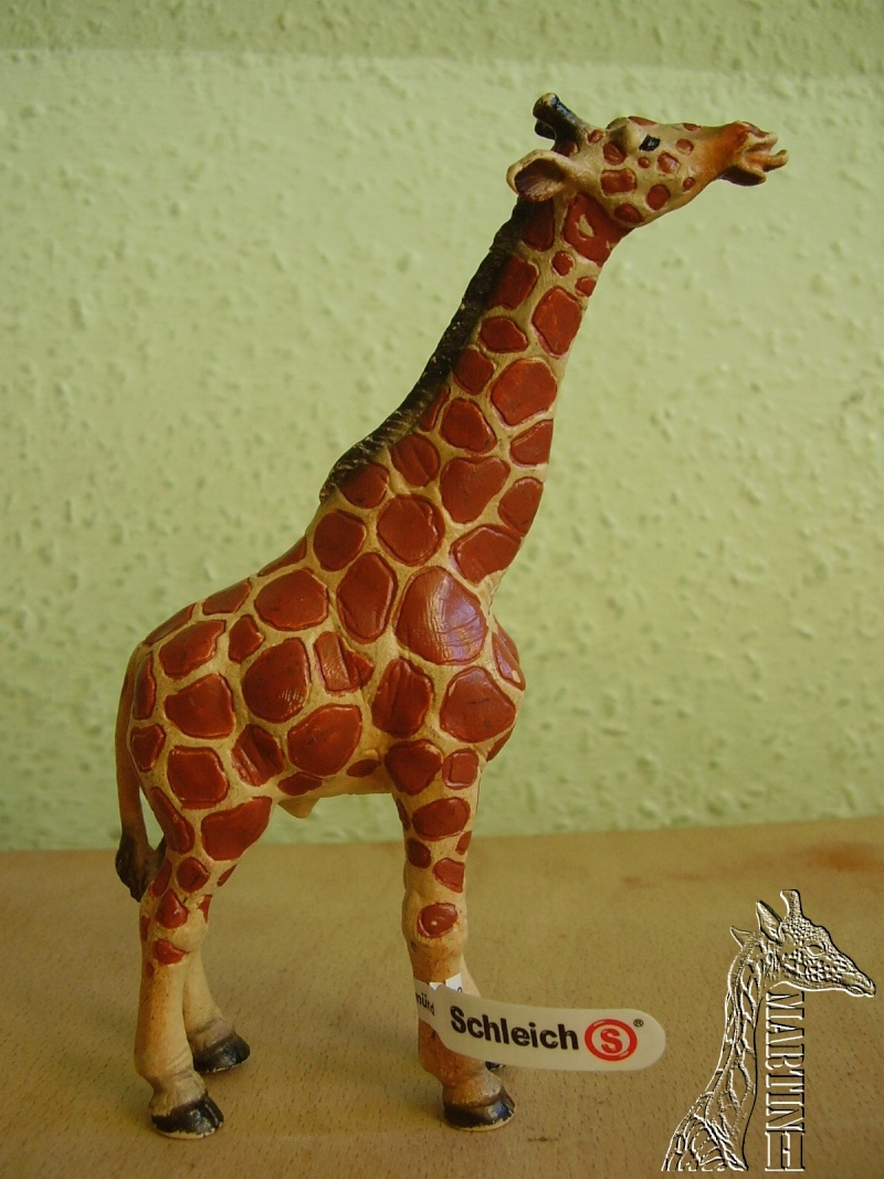 Martin's Schleich newcomers! - Page 6 P1010291