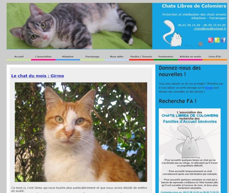 Attention : nouveau site internet www.chatslibresdecolomiers.com Nouvea10