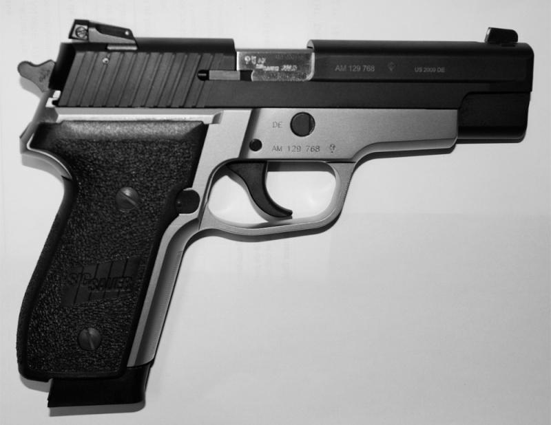 Que Vaut le Pistolet Sig Sauer P229 - 22 LR Sigsau10