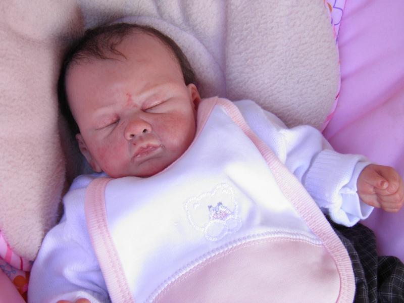"""naissance à la """"nurseriedelacigogne""""  - Page 7 P4300210"""