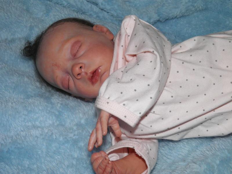 """naissance à la """"nurseriedelacigogne""""  - Page 7 P6240817"""