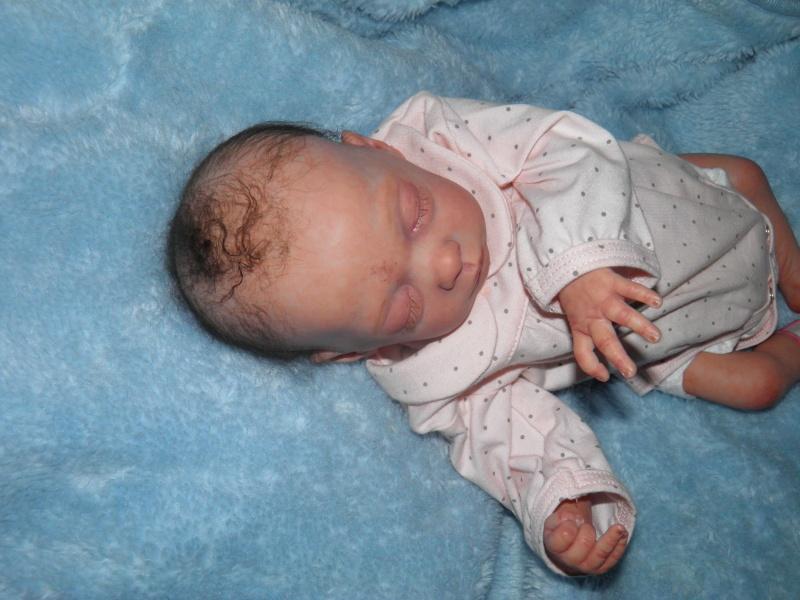 """naissance à la """"nurseriedelacigogne""""  - Page 7 P6240818"""