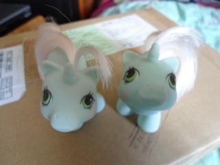 Mes poneys - Générations confondues Dsc00632