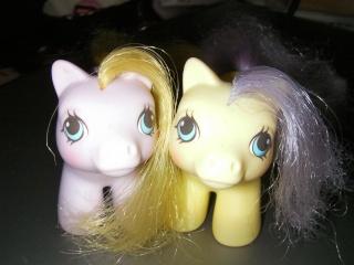 Mes poneys - Générations confondues Sany0157