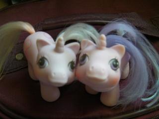 Mes poneys - Générations confondues Sany0212