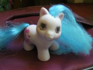 Mes poneys - Générations confondues Sany0213