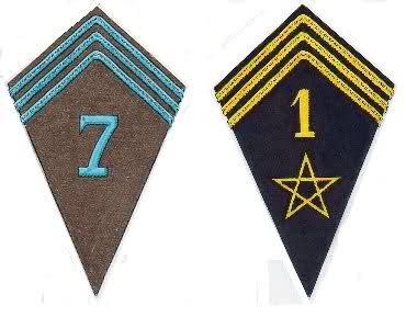 Troupes françaises d'Afrique en 1940- uniformes & insignes 1_rsm_10