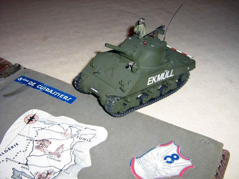 Mes Sherman M 4 ALMA & EKMÜL- 1951/53 - 8éme Cuir 1er escadron Img_0612