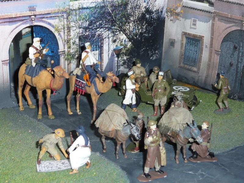 SUD TUNISIEN - Fin 1942 - Troupes Méharistes effectuant une jonction . P1040039
