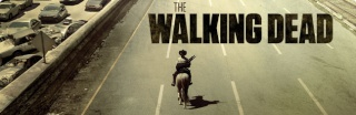 TWD Dual Banner15