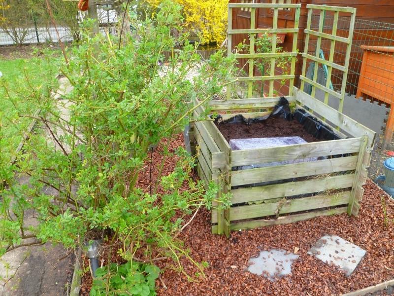 Mon jardin de fées (Chez Anne-Cécile) au fils du temps... P1020010