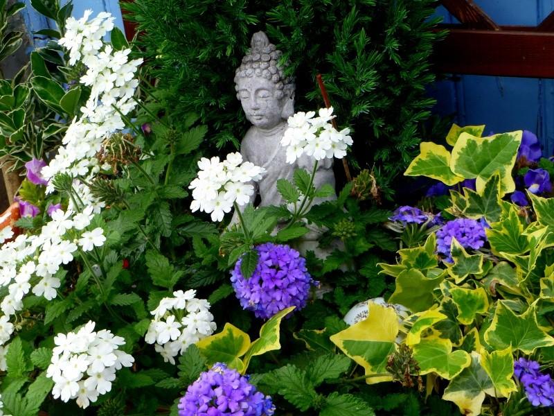 Mon jardin de fées (Chez Anne-Cécile) au fils du temps... P1020610