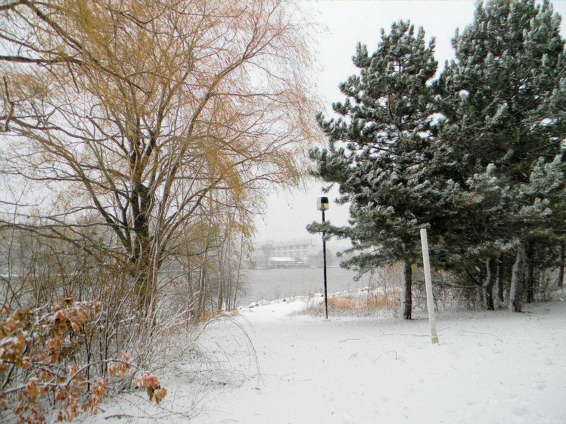 Photos de neige Neige911