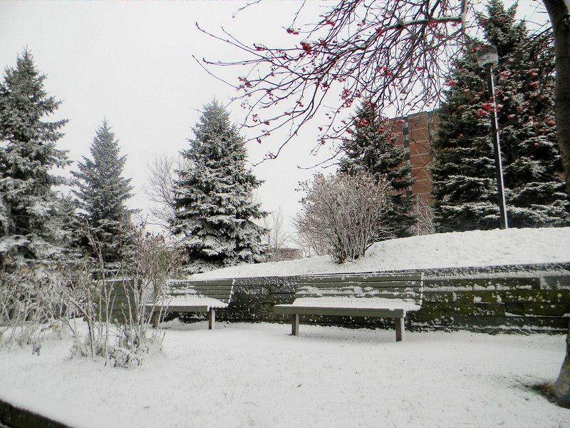 Photos de neige Neige_11