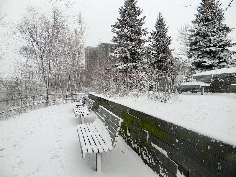 Photos de neige Neige_12
