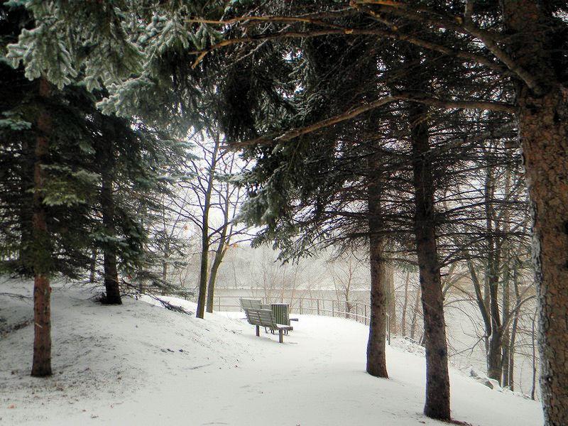 Photos de neige Neige_13