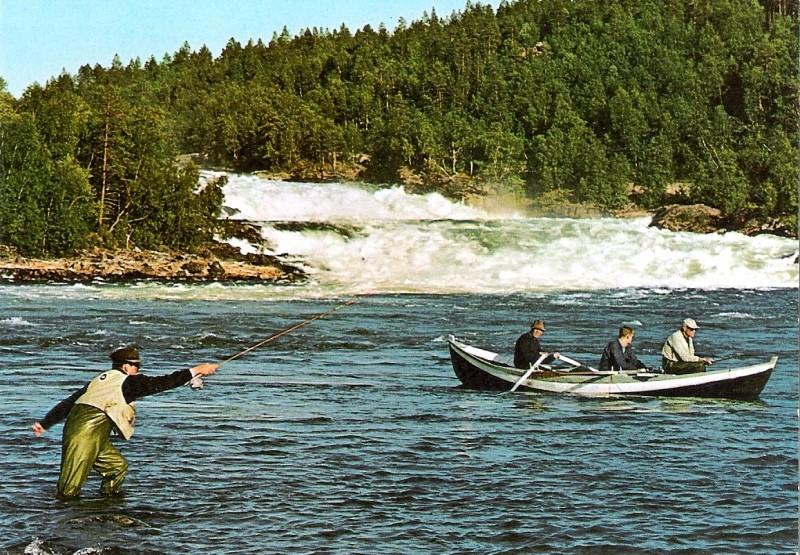 Impressionen aus Norwegen Lachsf10
