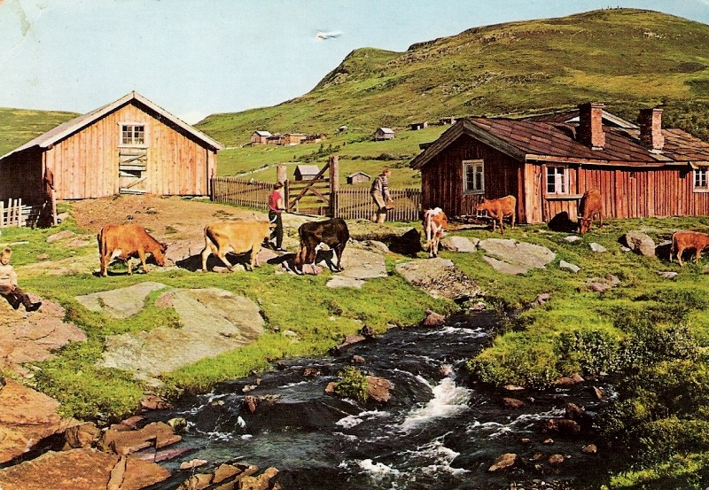 Impressionen aus Norwegen Norweg10