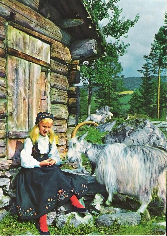 Impressionen aus Norwegen Norweg11