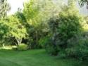 Le jardin du Clos Ballot Dsc02229