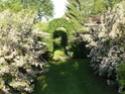 Le jardin du Clos Ballot Dsc02236
