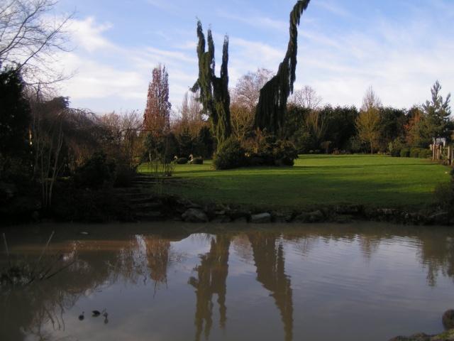 jardin pépinier LE POINT DU JOUR 110