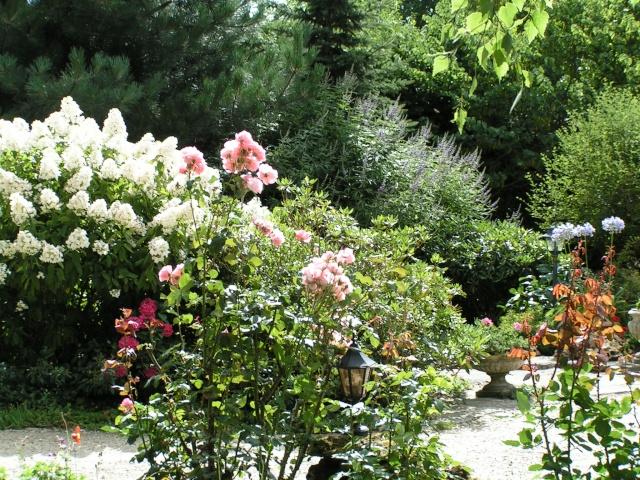 le jardin de valérie Douceu13