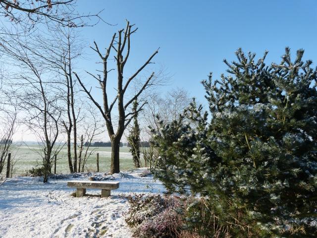 21 - Paysages d'hiver.........photos reçues !!! - Page 5 P1000310