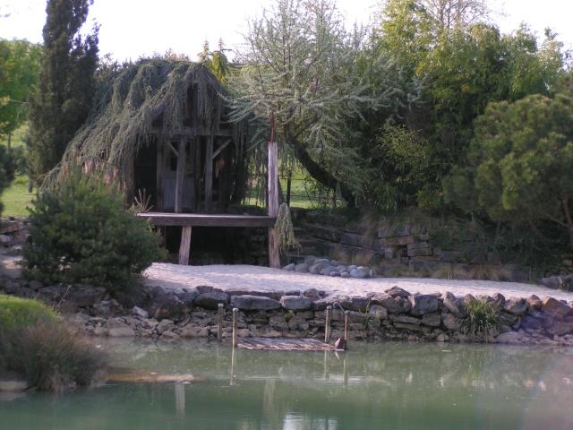 jardin pépinier LE POINT DU JOUR Pict0010