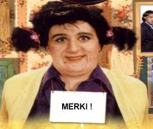 Cherche canne light haut de gamme Merki113