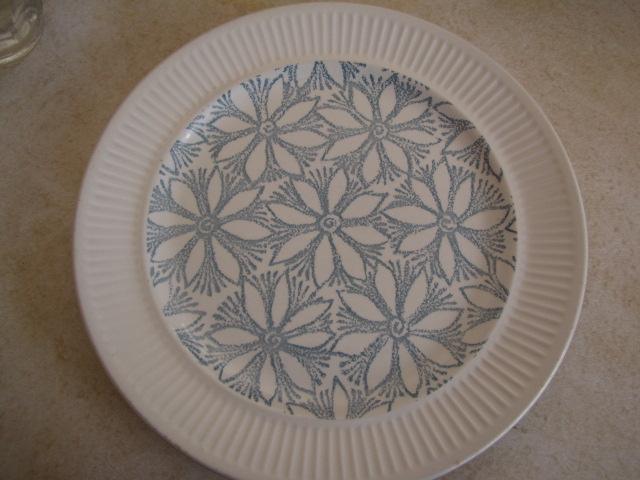 kelston Ceramics Hazel and Petula d255, Panama d436 and other coloured clematis - Page 2 Hazel110