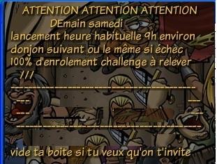 Description de guilde Imager13