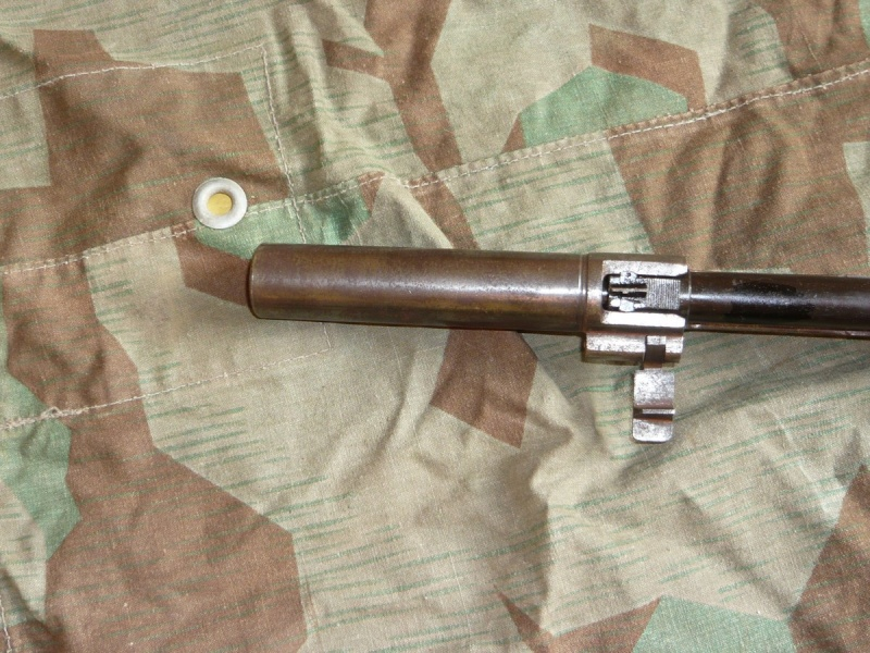 Lances grenade amovibles P1060013