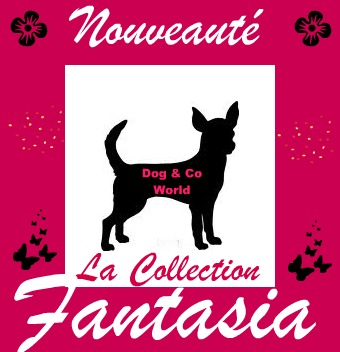 Collection Fantasia Collec10