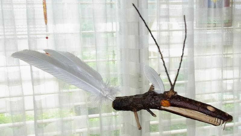 Drachenvogelreptil Drache10
