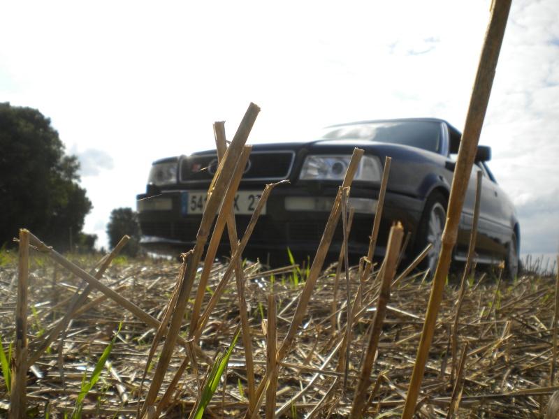audi cabriolet - Page 2 Audi1210