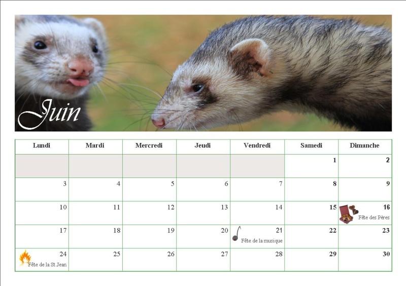 Les calendriers 2013 710